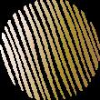 Logo Tom van Dijk beeldmerk
